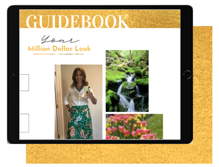 MDL guidebook gold
